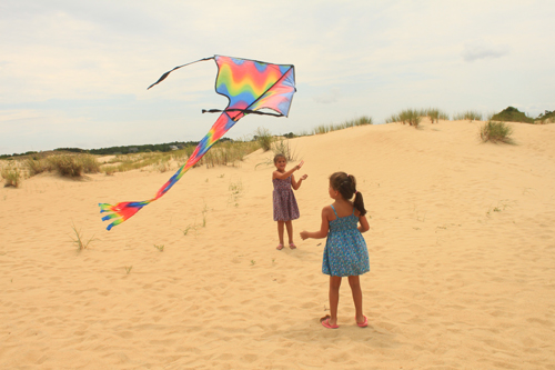 Kids fly kites at Jockey's Ridge State Park, NC