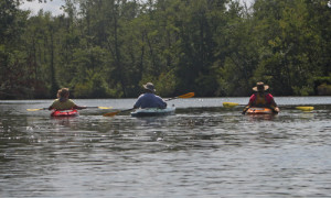 16 Hags Paddled the Transquaking River – One got Towed